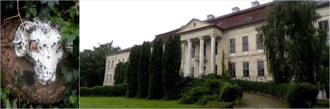 drogosze1